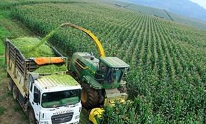 Huy động vốn đầu tư cho phát triển nông nghiệp tại tỉnh Nghệ An