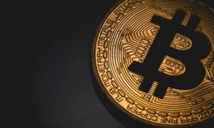 Bitcoin đã tăng 20% từ đầu năm, được dự báo đạt mức 16.000 USD vào cuối năm