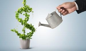 Hoạt động đầu tư của Việt Nam ra nước ngoài: Thực trạng và khuyến nghị