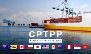 Tham gia CPTPP: Nhiều mặt hàng xuất khẩu sẽ tăng tốc
