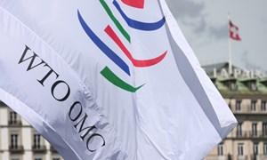 WTO tính điều tra thuế quan ông Trump áp lên hàng Trung Quốc