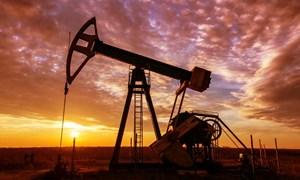 Giá dầu có thể tiếp tục giảm mạnh trước những lo ngại của dịch viêm phổi Vũ Hán