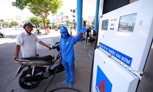 Giá xăng giữ nguyên trong kỳ điều hành đầu tiên năm Kỷ Hợi