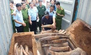 Bộ Tài chính đẩy mạnh kiểm soát buôn bán, tiêu thụ các loài động vật hoang dã nguy cấp