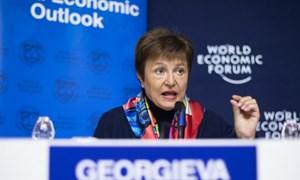 COVID-19 làm giảm tăng trưởng kinh tế toàn cầu 2020 đến mức nào?