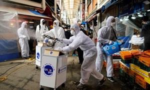 Hàn Quốc sẽ bỏ tù 1 năm, phạt nặng với người nhiễm corona cố tình trốn cách ly
