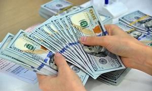 Giá USD lập kỷ lục mới cao nhất từ đầu năm