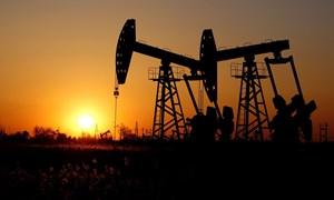 Thị trường dầu mỏ đối mặt với nhiều biến động