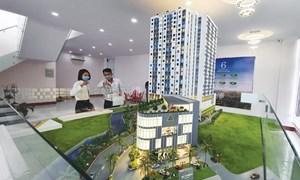 Bất động sản TP. Hồ Chí Minh: Xuất hiện chủ đầu tư tung