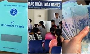 Trốn đóng BHXH bắt buộc, BHTN bị phạt đến 75 triệu đồng