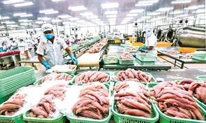 Xuất khẩu sang EU nhờ EVFTA: Cơ hội lớn nhưng khởi đầu sẽ chật vật
