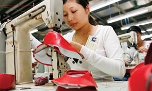 Ngành xuất khẩu tỷ USD đợi gì từ EVFTA?