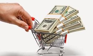 Tín dụng tiêu dùng quá mạnh có thể dẫn đến bong bóng tài sản