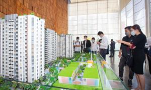 Hàng loạt chủ đầu tư bất động sản tung chính sách hấp dẫn dịp đầu năm
