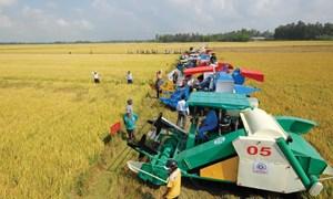 Quyết toán các khoản hỗ trợ doanh nghiệp đầu tư vào nông nghiệp, nông thôn