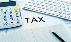 Bộ Tài chính đề xuất phương pháp tính thuế đơn giản cho doanh nghiệp siêu nhỏ