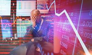 Hơn 66% nhà đầu tư Mỹ không thay đổi danh mục đầu tư chứng khoán bất chấp sự lao dốc của thị trường