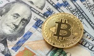 Thị trường hỗn loạn, bitcoin có còn là tài sản trú ẩn an toàn?