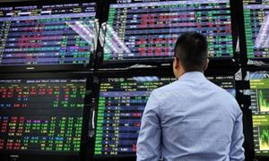 VN-Index củng cố sắc xanh