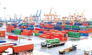 Miễn thuế với hàng hóa xuất nhập khẩu phục vụ khắc phục hậu quả thiên tai, dịch bệnh