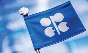 Mỹ không muốn đàm phán về giá dầu?
