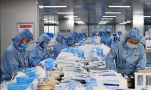 Những lưu ý xuất khẩu đồ bảo hộ, khẩu trang vào thị trường EU