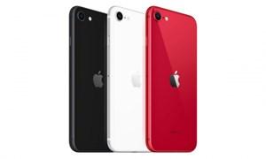 Chuyên gia nói gì về mẫu iPhone giá rẻ của Apple?