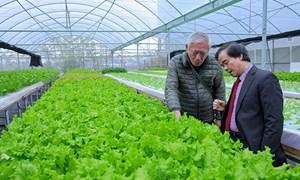 """Ngành nông nghiệp đang thu hút nhiều doanh nghiệp """"bỏ vốn"""""""