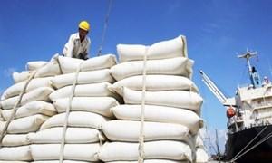 Bộ Tài chính đề nghị Bộ Công an điều tra, xác minh thông tin tiêu cực trong xuất khẩu gạo