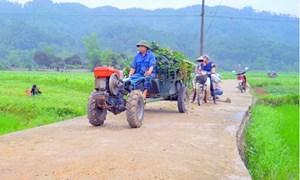 Huy động nguồn lực xây dựng nông thôn mới tại huyện Võ Nhai, tỉnh Thái Nguyên