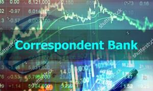 Ngân hàng đại lý: Hấp lực từ một kênh phân phối mới