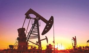 """""""Hồi kết"""" cho ngành công nghiệp dầu đá phiến"""