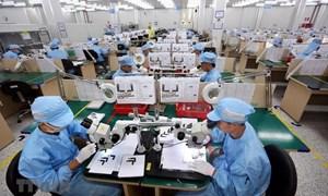 Doanh nghiệp điện, điện tử ổn định xuất khẩu