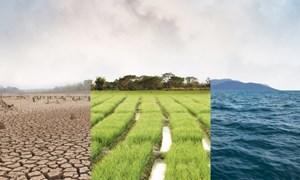 Từ ngày 26/5/2020, giảm 30% phí khai thác, sử dụng dữ liệu về môi trường