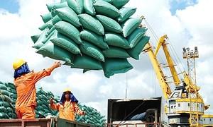 Tiếp tục đăng ký tờ khai xuất khẩu gạo từ 0 giờ ngày 28/4/2020 với hạn ngạch được hồi lại