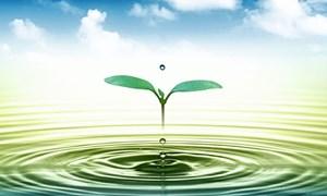 Ngành Tài chính hưởng ứng Tuần lễ Quốc gia nước sạch và vệ sinh môi trường năm 2021