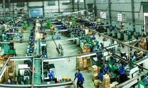 Hiệu quả sản xuất tăng cao nhờ áp dụng phương pháp TPM