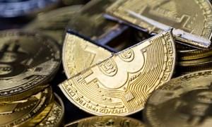 Nhà đầu tư bitcoin