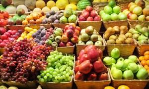 Phần lớn trái cây ngoại đến từ Trung Quốc