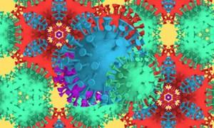 Tìm ra kháng thể ức chế hoàn toàn sự tấn công của SARS-CoV-2