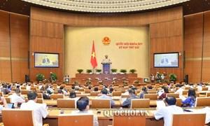 Dự thảo Luật Quản lý thuế (sửa đổi) đã được tiếp thu, cụ thể tối đa các nội dung