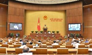 Đại biểu Quốc hội đồng thuận, đánh giá cao Nghị quyết miễn thuế sử dụng đất nông nghiệp