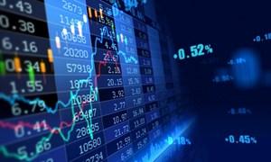 Nhà đầu tư cá nhân tại Việt Nam, Đài Loan, Hàn Quốc có sức ảnh hưởng ngày một lớn