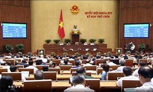 Quốc hội chính thức phê chuẩn EVFTA và EVIPA