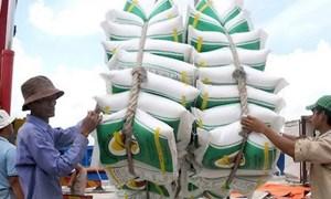 Xuất khẩu gạo lội ngược dòng