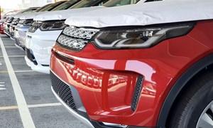 Sản lượng tiêu thụ ô tô toàn thị trường tiếp tục tăng
