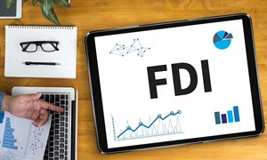 Tầm quan trọng của khu vực FDI đối với phát triển kinh tế - xã hội Việt Nam