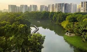 5 điều doanh nghiệp bất động sản cần chuẩn bị hậu COVID-19
