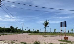 Vùng ven Hà Nội sôi động đấu giá đất
