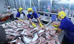 Tin vui đối với ngành sản xuất, xuất khẩu thủy sản của Việt Nam